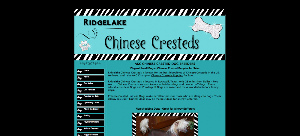 Chinese Cresteds