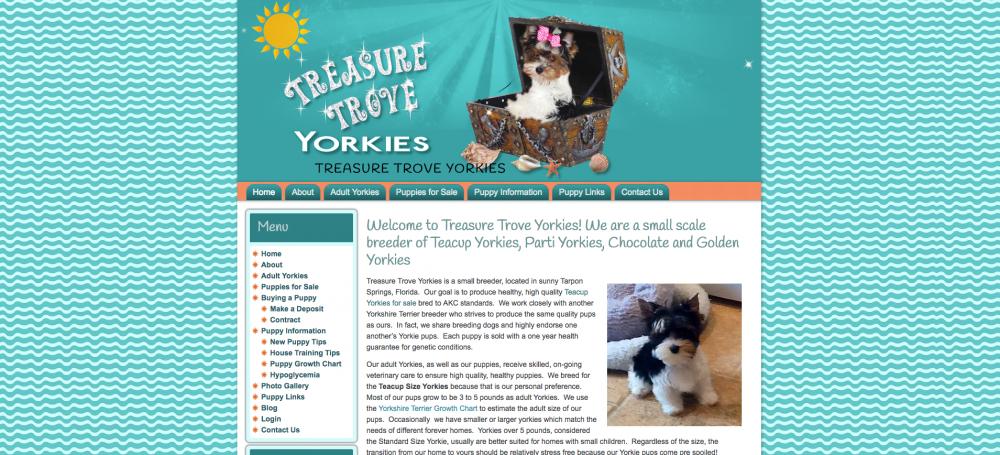 Treasure Trove Yorkies