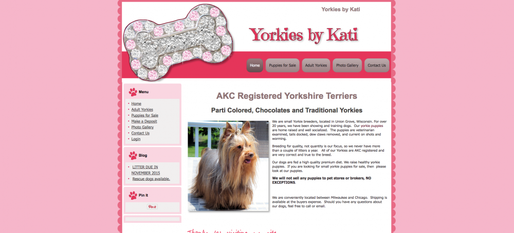 Yorkies by Kati