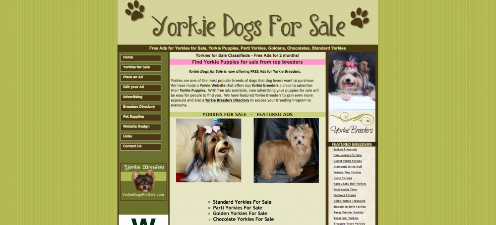 Yorkie Dogs For Sale