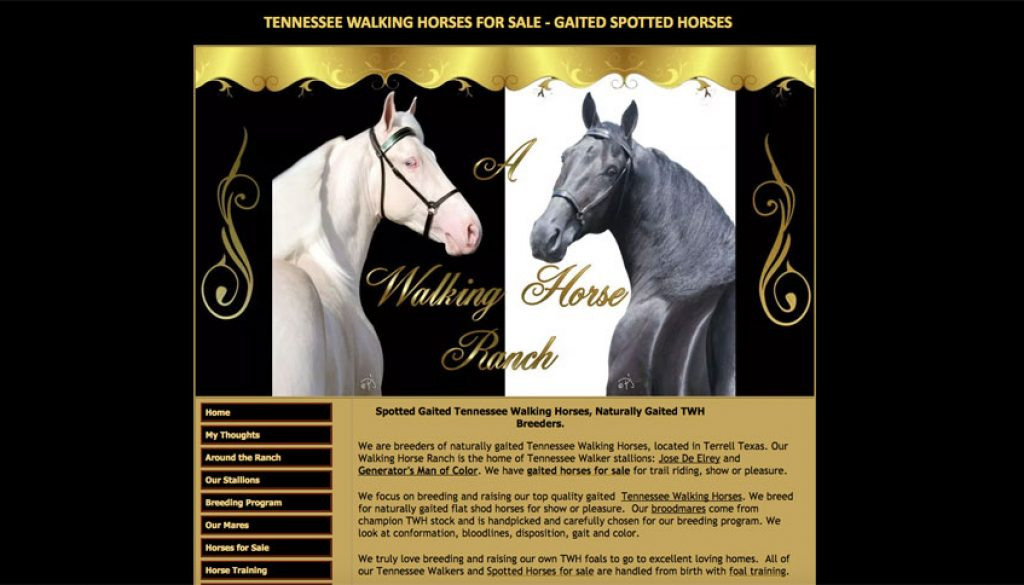A Walking Horse Ranch