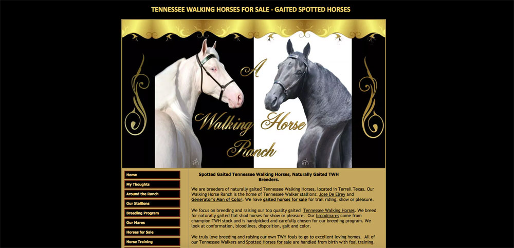 A Walking Horse Ranch