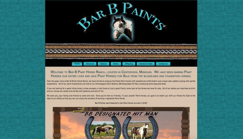 Bar B Paints