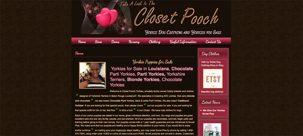 Closet Pooch Yorkies
