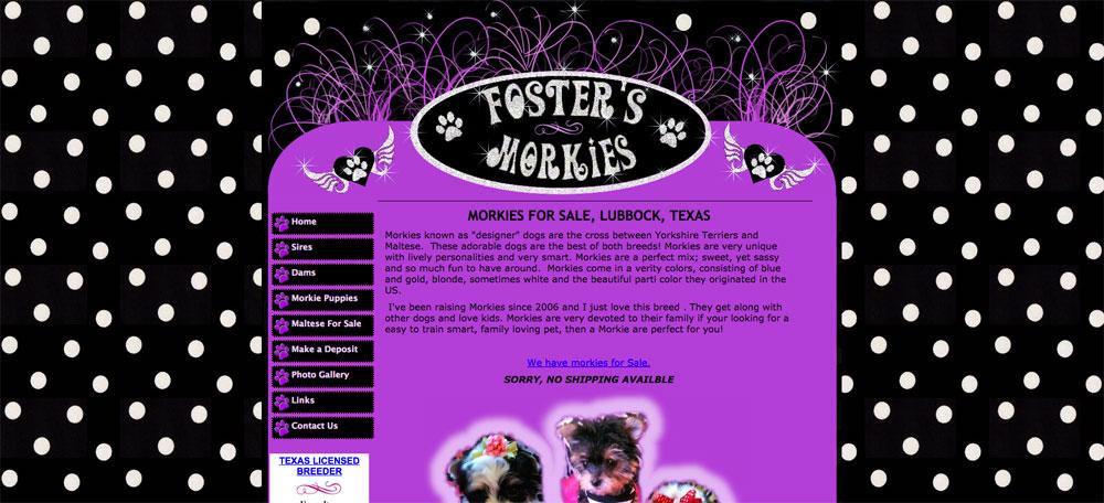 Fosters Morkies