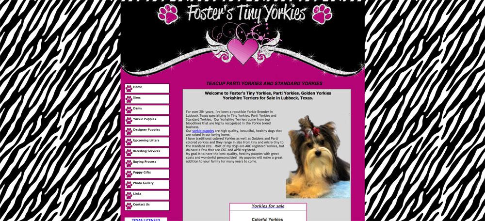 Fosters Yorkies